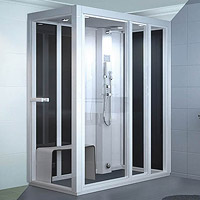 Impression Steam Shower