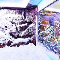 Bespoke Snow Rooms